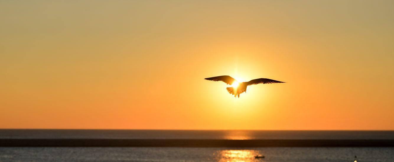 Morgenroutine – Wie der Morgen unseren Tag verändern kann.