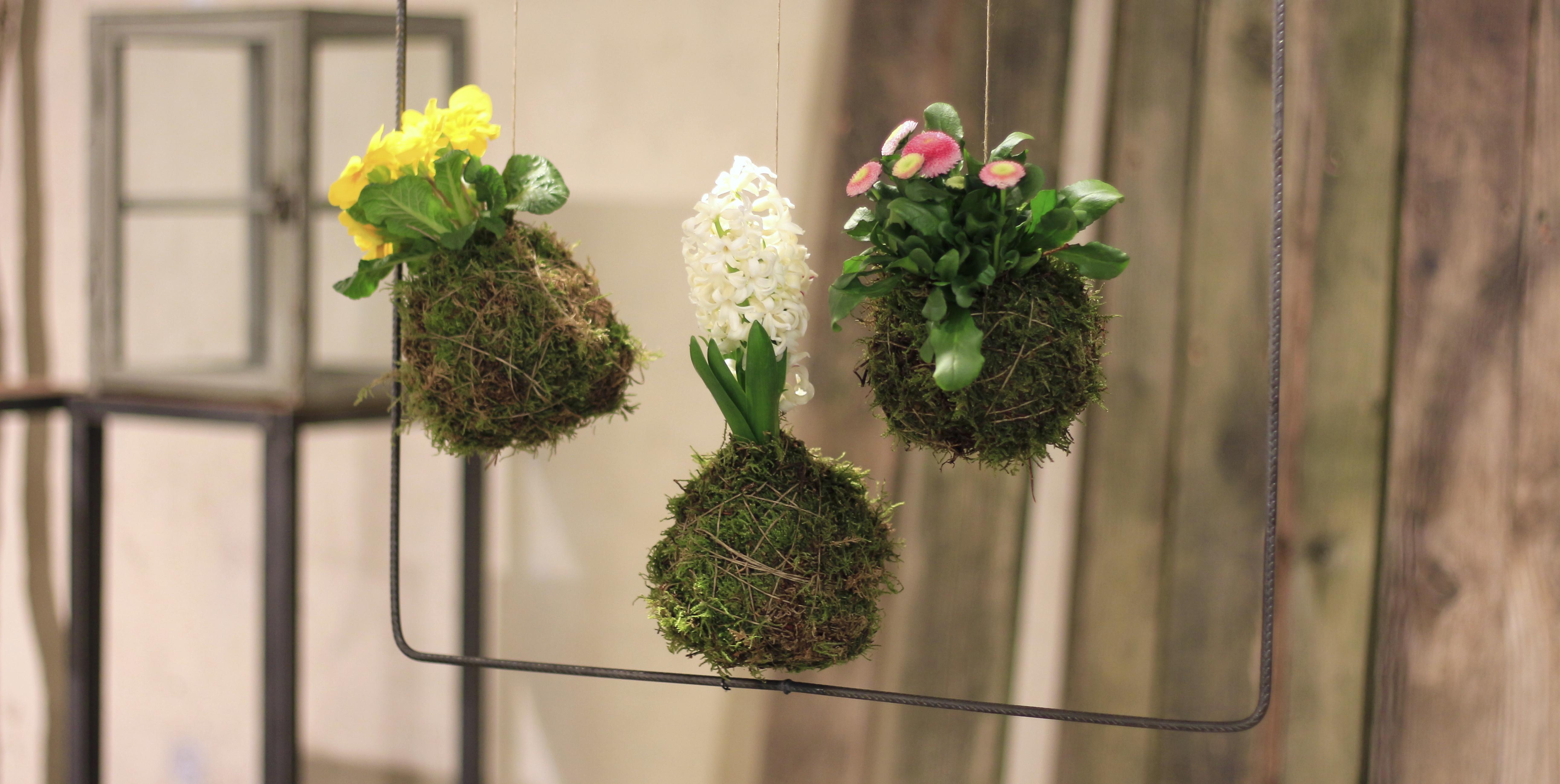 Hängende Frühlingsgärten aus Japan