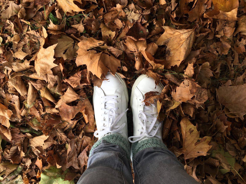 10,5 Gründe, warum der Herbst schön ist!