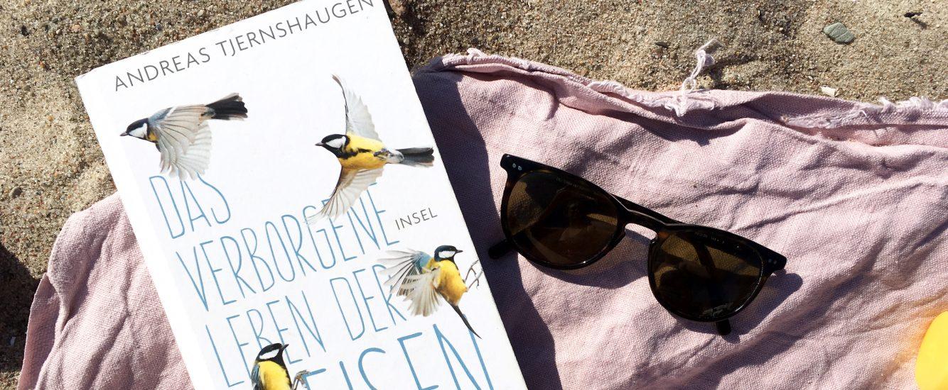 Sommerlektüre: Unsere Buchtipps + VERLOSUNG