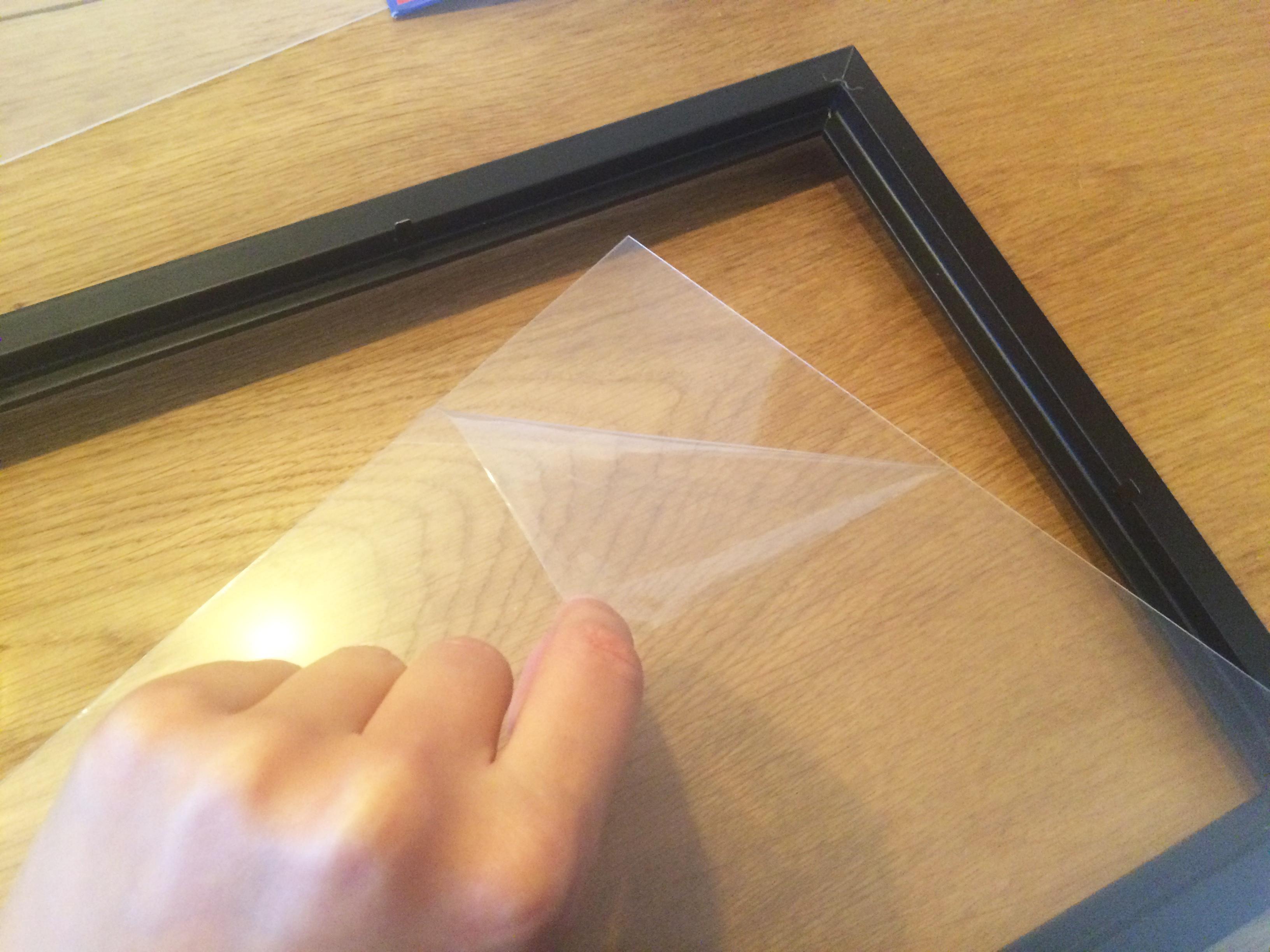 Floating Frame Herbarium