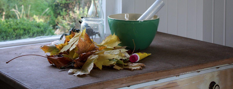 Hol dir den Herbst ins Haus – DIY