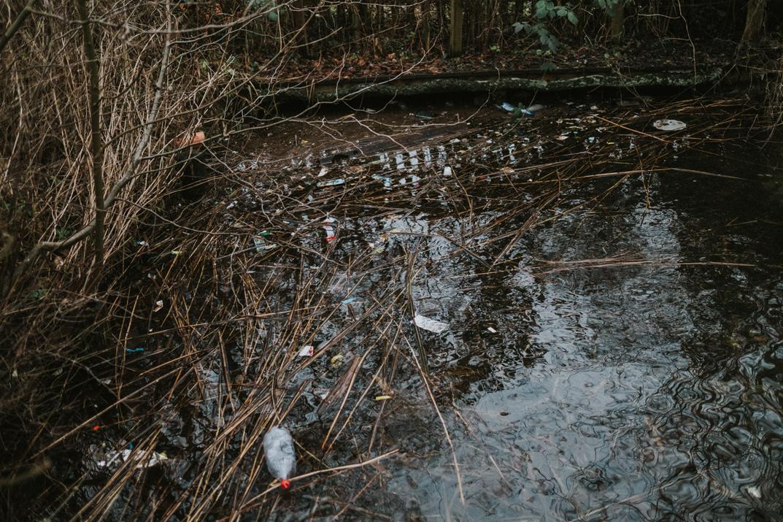 Umweltverschmutzung durch Luftballons - Müll im Wasser