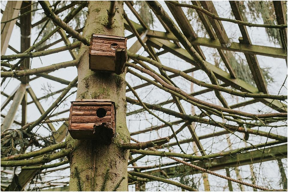 Eichhörnchen Schutzstation Eckernförde - Die Kobel der Hörnchen