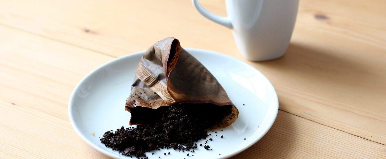 Peeling, Dünger und Co – was Kaffeesatz alles kann!