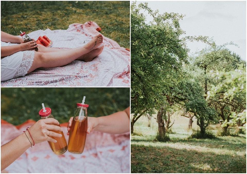Ein Picknick ohne Müll - Zero Waste im Sommer