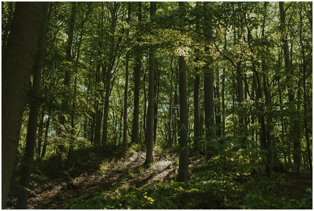 Waldbaden – Achtsamkeit im Wald