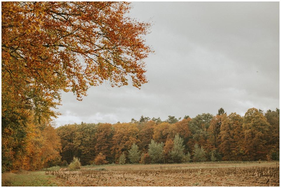 Schöne Spaziergänge im Herbst/Winter - Mölln und Umbegung