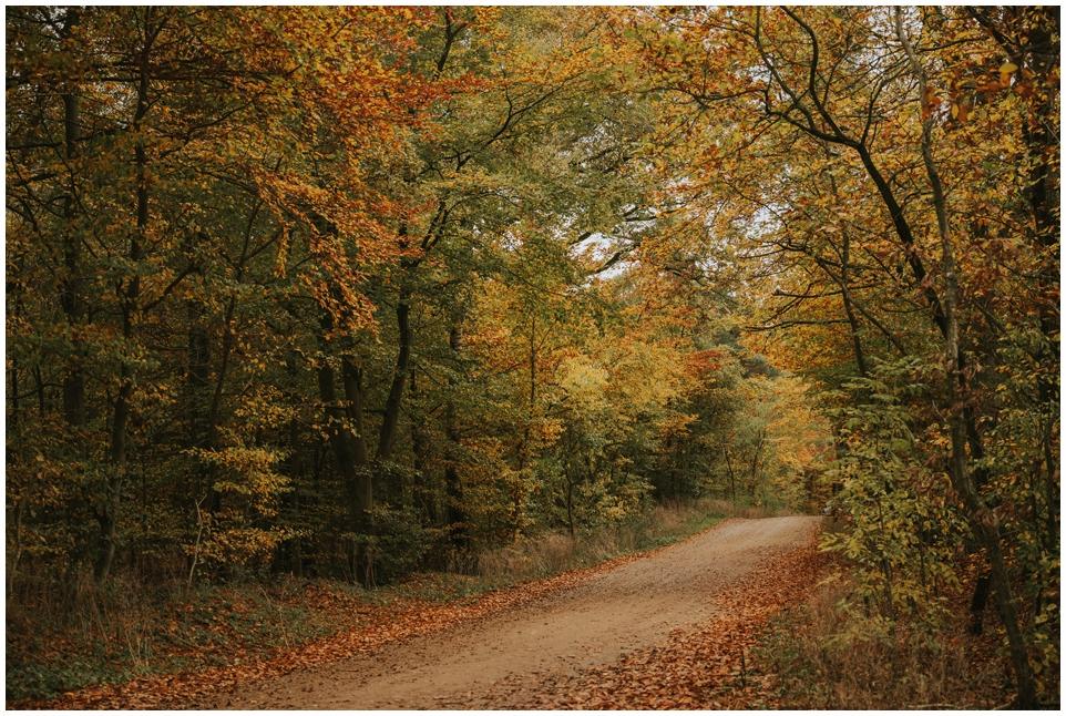 Schöne Spaziergänge im Herbst/Winter